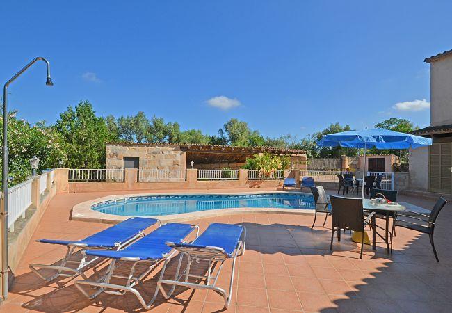 Maison de vacances Pleto (2629628), Lloret de Vistalegre, Majorque, Iles Baléares, Espagne, image 4