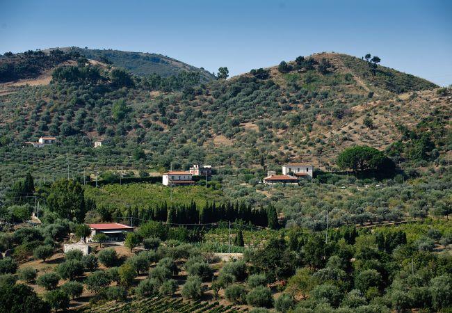 Ferienwohnung La Collina degli Ulivi - Casa Limoni 2 (2127483), Patti, Messina, Sizilien, Italien, Bild 6