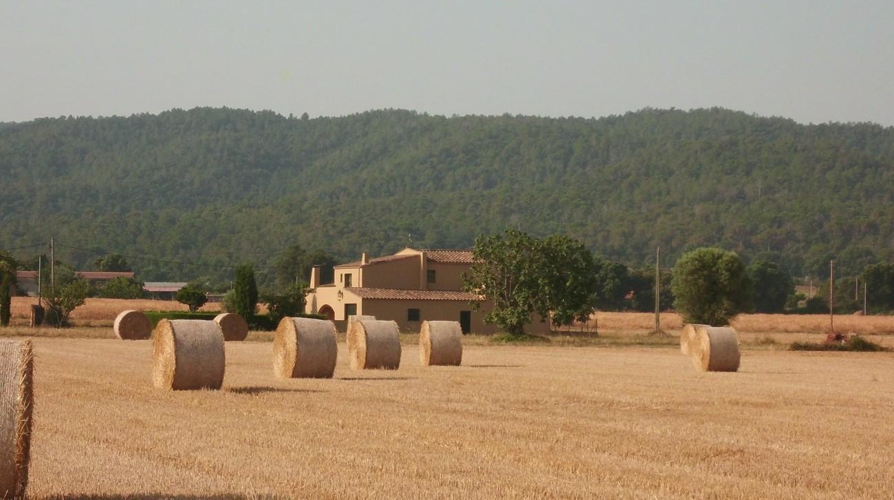 Holiday house MAS COLLS FONTETA - 10 PAX (1576397), Fonteta, Costa Brava, Catalonia, Spain, picture 3