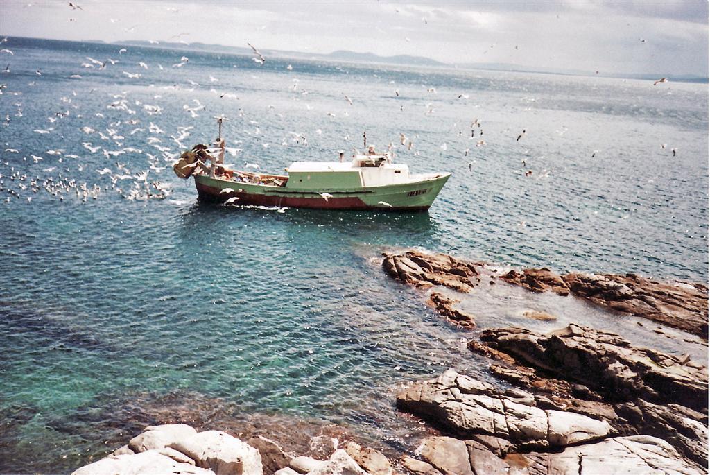 Ferienwohnung 00825-Port Nord 2º J (788892), Rosas (Costa Brava), Costa Brava, Katalonien, Spanien, Bild 9
