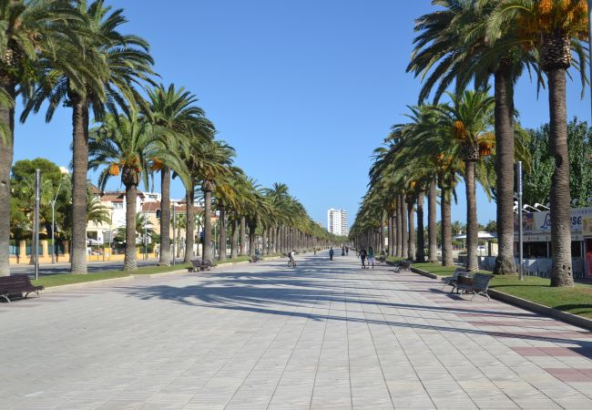 Holiday apartment RIVIERA PARK (2034823), Salou, Costa Dorada, Catalonia, Spain, picture 26