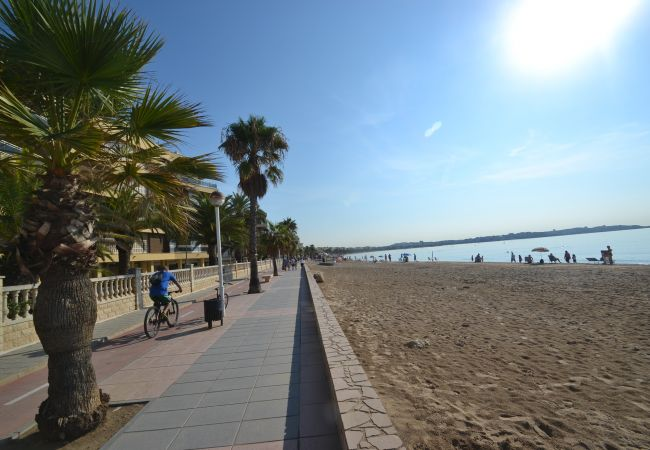 Ferienwohnung BELA MAR PB (2072811), Cambrils, Costa Dorada, Katalonien, Spanien, Bild 43