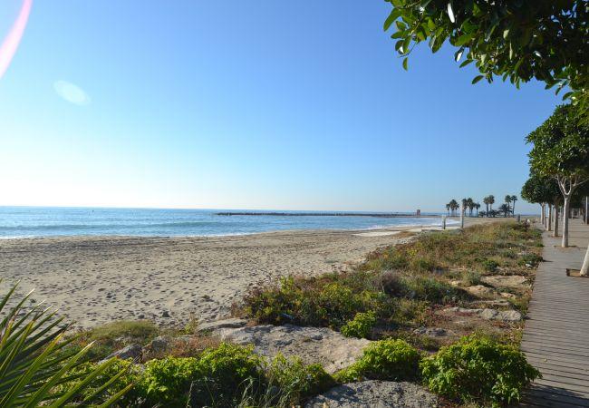 Ferienwohnung CALIFORNIA (2034720), Cambrils, Costa Dorada, Katalonien, Spanien, Bild 45