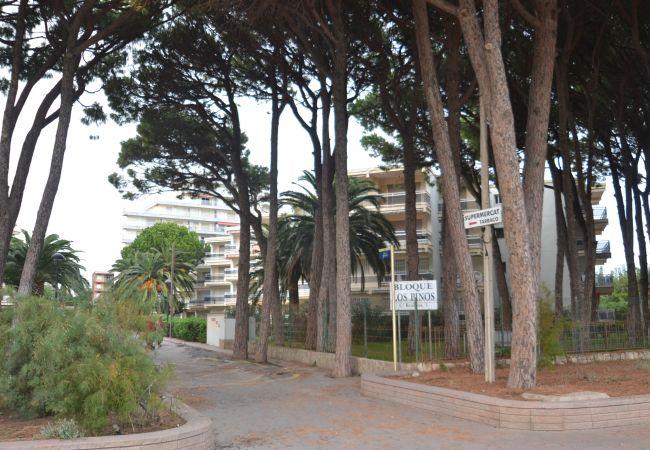 Ferienwohnung CALIFORNIA (2034720), Cambrils, Costa Dorada, Katalonien, Spanien, Bild 31
