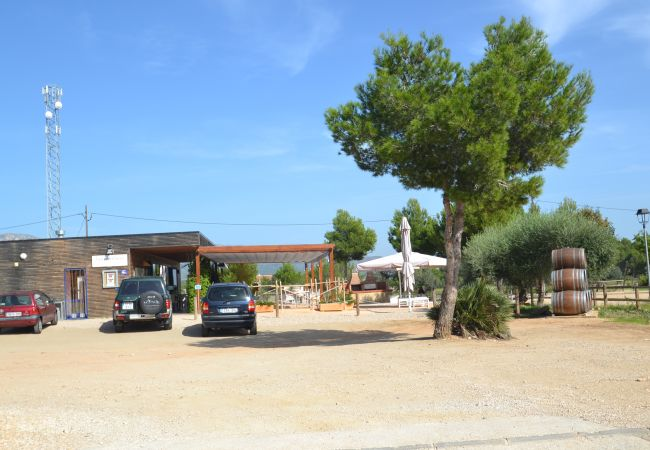 Ferienhaus PILAR (2034858), L'Ametlla de Mar, Costa Dorada, Katalonien, Spanien, Bild 32