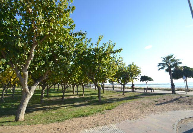 Ferienwohnung NEUCENT (2072804), Cambrils, Costa Dorada, Katalonien, Spanien, Bild 18