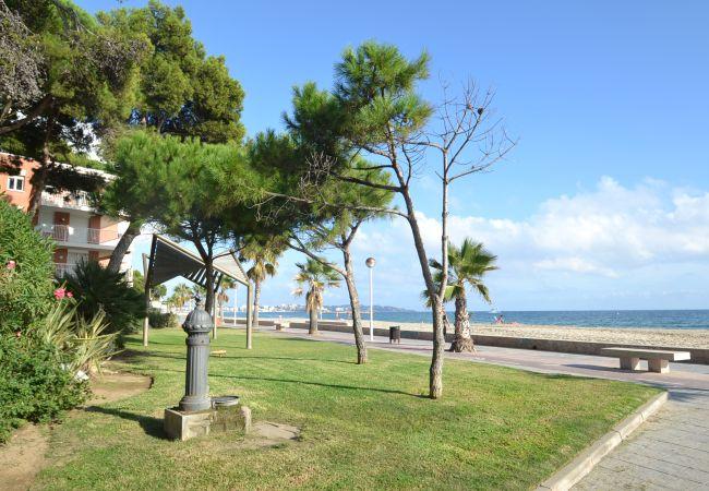 Ferienwohnung MEMLING (2072809), Cambrils, Costa Dorada, Katalonien, Spanien, Bild 27