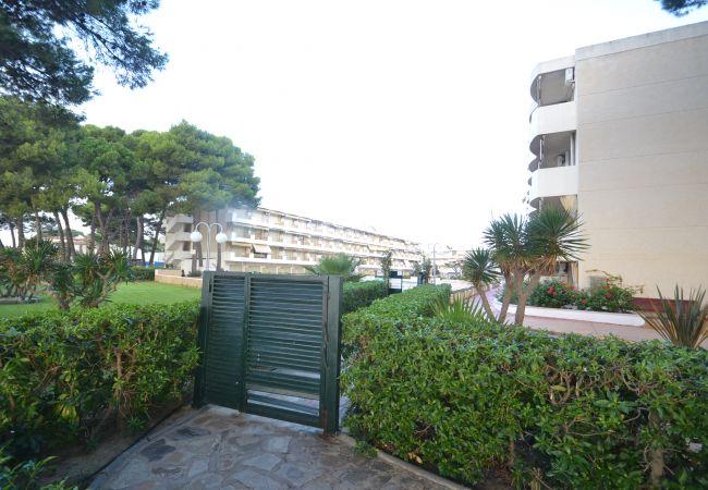 Ferienwohnung INTERNACIONAL I 35 (2072810), Cambrils, Costa Dorada, Katalonien, Spanien, Bild 19