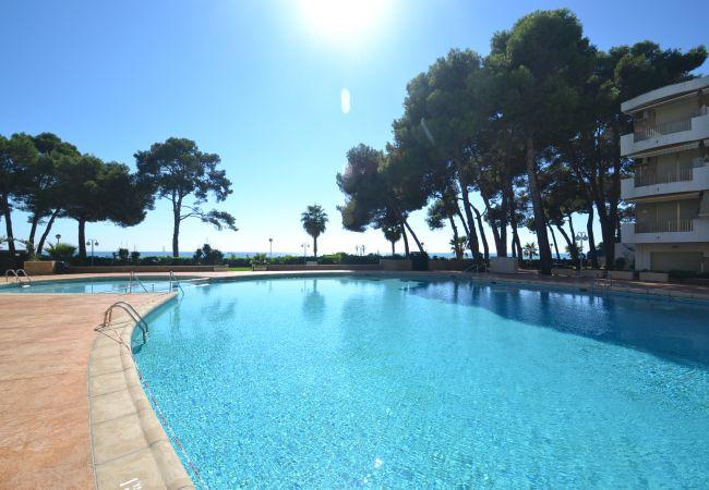 Ferienwohnung INTERNACIONAL I 35 (2072810), Cambrils, Costa Dorada, Katalonien, Spanien, Bild 25