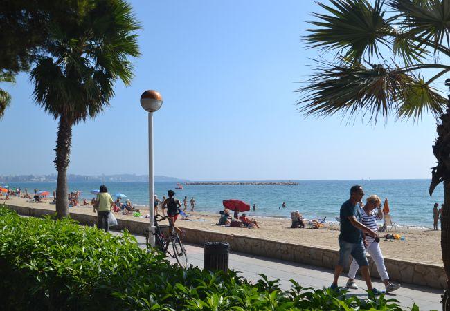 Ferienwohnung INTERNACIONAL I 35 (2072810), Cambrils, Costa Dorada, Katalonien, Spanien, Bild 29