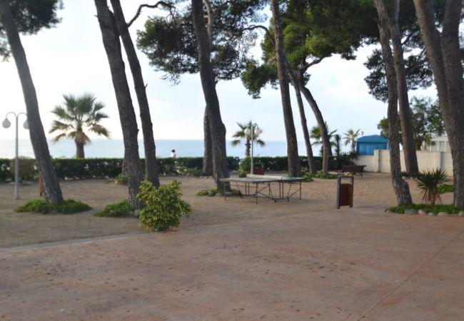 Ferienwohnung INTERNACIONAL I 35 (2072810), Cambrils, Costa Dorada, Katalonien, Spanien, Bild 21