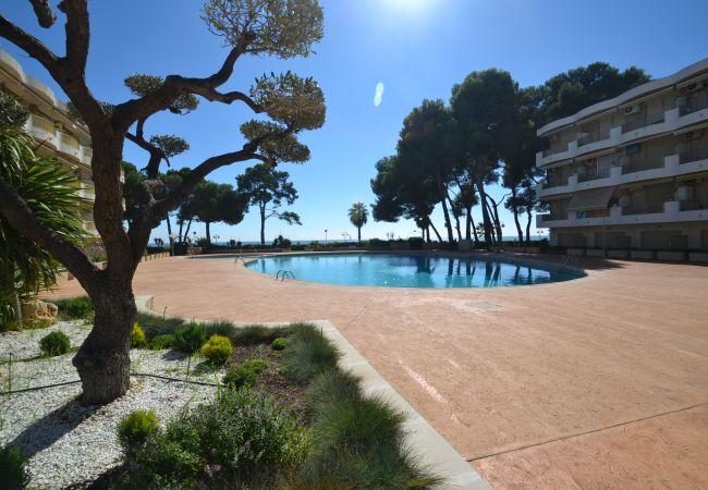 Ferienwohnung INTERNACIONAL I 35 (2072810), Cambrils, Costa Dorada, Katalonien, Spanien, Bild 28
