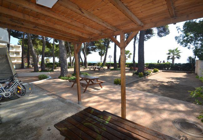 Ferienwohnung INTERNACIONAL I 35 (2072810), Cambrils, Costa Dorada, Katalonien, Spanien, Bild 24