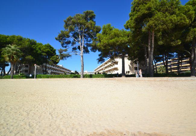 Ferienwohnung INTERNACIONAL I 35 (2072810), Cambrils, Costa Dorada, Katalonien, Spanien, Bild 23