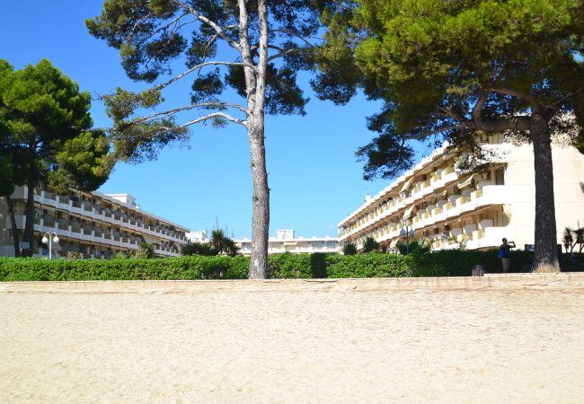 Ferienwohnung INTERNACIONAL I 35 (2072810), Cambrils, Costa Dorada, Katalonien, Spanien, Bild 22