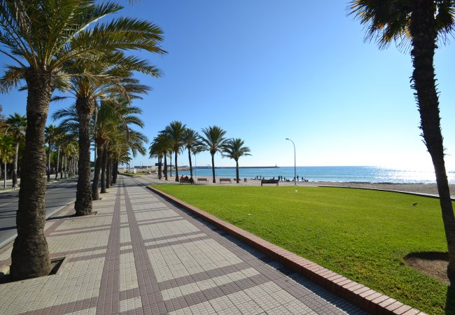 Ferienwohnung INTERNACIONAL I 35 (2072810), Cambrils, Costa Dorada, Katalonien, Spanien, Bild 46