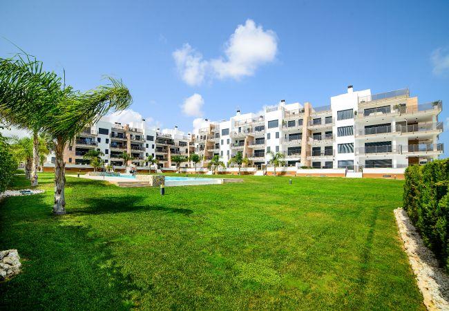 Appartement de vacances Niagara (1998317), Cabo Roig, Costa Blanca, Valence, Espagne, image 24