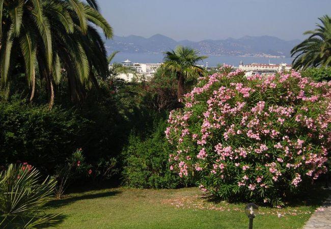 Appartement de vacances HSUD0395 (2748809), Cannes, Côte d'Azur, Provence - Alpes - Côte d'Azur, France, image 12