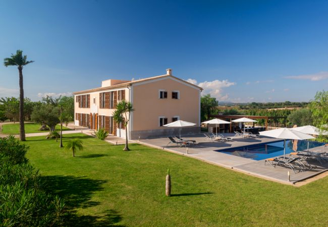 Ferienhaus Villa in Manacor, Palma de Mallorca 102676 (1937888), Manacor, Mallorca, Balearische Inseln, Spanien, Bild 23
