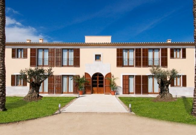 Ferienhaus Villa in Manacor, Palma de Mallorca 102676 (1937888), Manacor, Mallorca, Balearische Inseln, Spanien, Bild 14