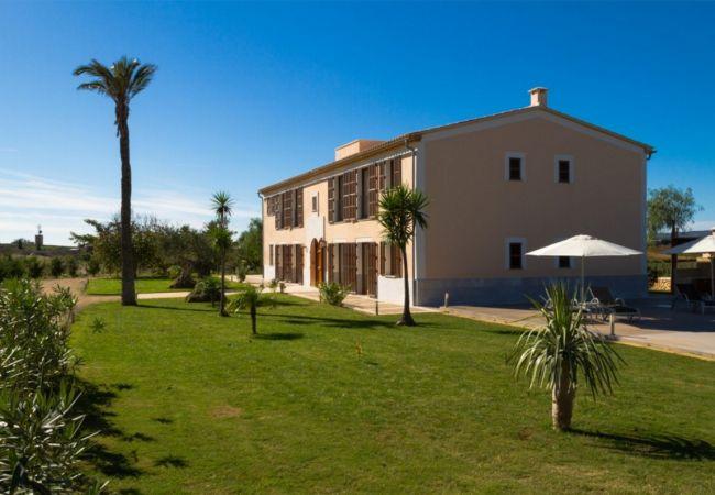Ferienhaus Villa in Manacor, Palma de Mallorca 102676 (1937888), Manacor, Mallorca, Balearische Inseln, Spanien, Bild 8