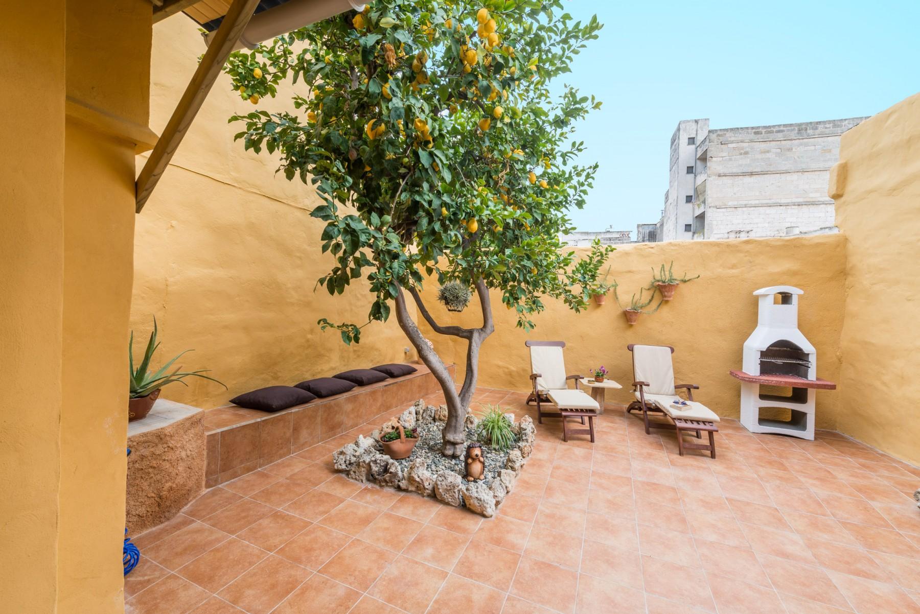 Sabatera - 1079 for 6 guests in Inca, Spain