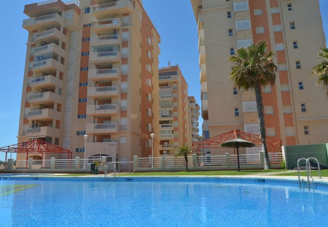 Appartement de vacances Wohnung mit Meerblick 4. Stock, Gemeinschaftspool, kostenloses Parken (1992740), La Manga del Mar Menor, Costa Calida, Murcie, Espagne, image 9