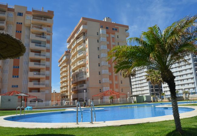 Appartement de vacances Wohnung mit Meerblick 4. Stock, Gemeinschaftspool, kostenloses Parken (1992740), La Manga del Mar Menor, Costa Calida, Murcie, Espagne, image 10