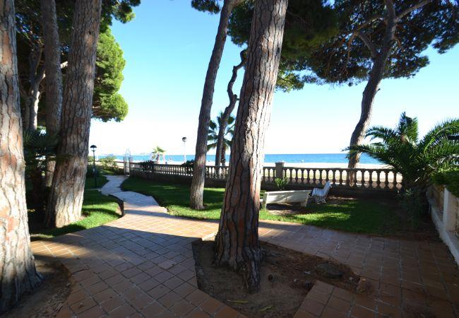 Ferienwohnung VERSAILLES (2034723), Cambrils, Costa Dorada, Katalonien, Spanien, Bild 3