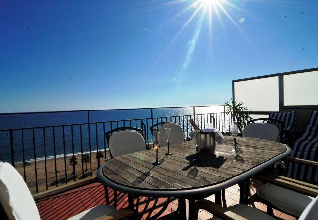 Ferienwohnung OP HomeHolidaysRentals Mar - Costa Barcelona (2067416), Pineda de Mar, Costa del Meresme, Katalonien, Spanien, Bild 3