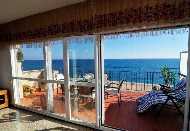 Ferienwohnung OP HomeHolidaysRentals Mar - Costa Barcelona (2067416), Pineda de Mar, Costa del Meresme, Katalonien, Spanien, Bild 5