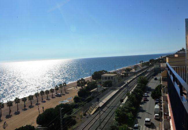 Ferienwohnung OP HomeHolidaysRentals Mar - Costa Barcelona (2067416), Pineda de Mar, Costa del Meresme, Katalonien, Spanien, Bild 24