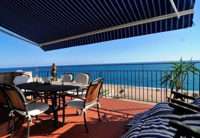 Ferienwohnung OP HomeHolidaysRentals Mar - Costa Barcelona (2067416), Pineda de Mar, Costa del Meresme, Katalonien, Spanien, Bild 1
