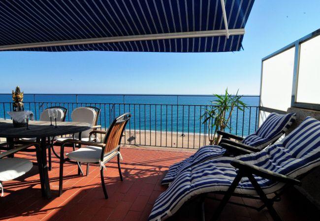 Ferienwohnung OP HomeHolidaysRentals Mar - Costa Barcelona (2067416), Pineda de Mar, Costa del Meresme, Katalonien, Spanien, Bild 4