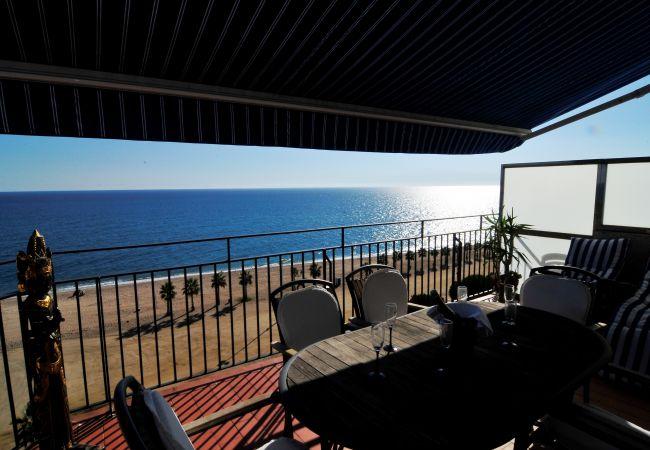 Ferienwohnung OP HomeHolidaysRentals Mar - Costa Barcelona (2067416), Pineda de Mar, Costa del Meresme, Katalonien, Spanien, Bild 19