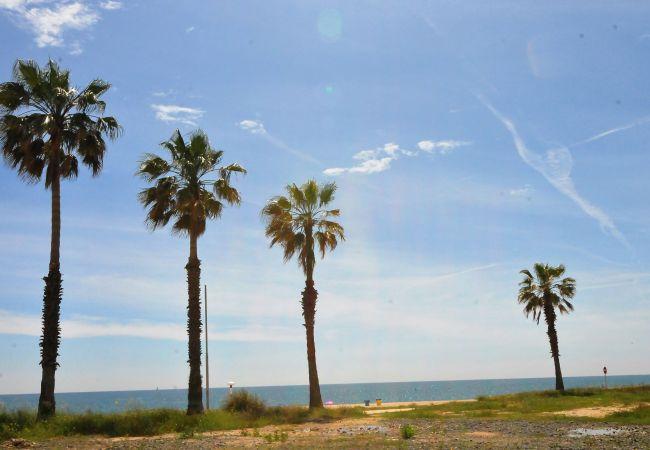 Ferienwohnung OP HomeHolidaysRentals Mar - Costa Barcelona (2067416), Pineda de Mar, Costa del Meresme, Katalonien, Spanien, Bild 26