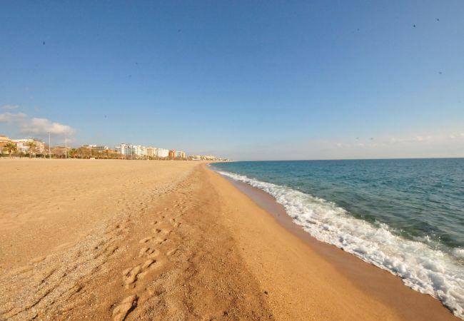 Ferienwohnung OP HomeHolidaysRentals Mar - Costa Barcelona (2067416), Pineda de Mar, Costa del Meresme, Katalonien, Spanien, Bild 37