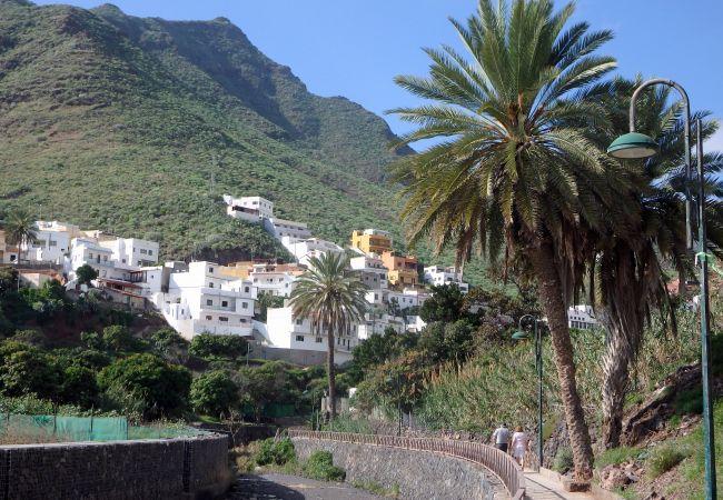 Maison de vacances El Varadero (2176952), Igueste Puertecito, Ténérife, Iles Canaries, Espagne, image 17