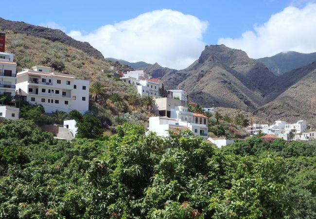 Maison de vacances El Varadero (2176952), Igueste Puertecito, Ténérife, Iles Canaries, Espagne, image 20