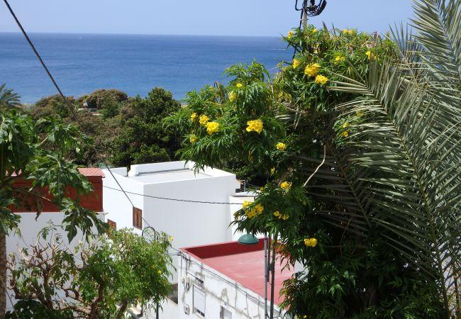Maison de vacances Casa Nieves de Igueste (2176957), Igueste Puertecito, Ténérife, Iles Canaries, Espagne, image 15