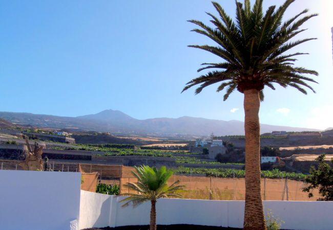 Maison de vacances Finca La Hoya (2176959), Alcala, Ténérife, Iles Canaries, Espagne, image 25