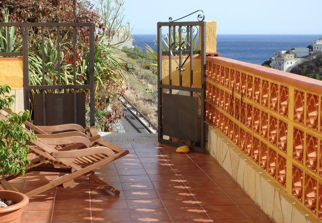 Maison de vacances La Bodeguilla (2176960), Igueste Puertecito, Ténérife, Iles Canaries, Espagne, image 2