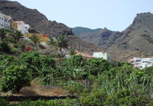 Maison de vacances La Bodeguilla (2176960), Igueste Puertecito, Ténérife, Iles Canaries, Espagne, image 18