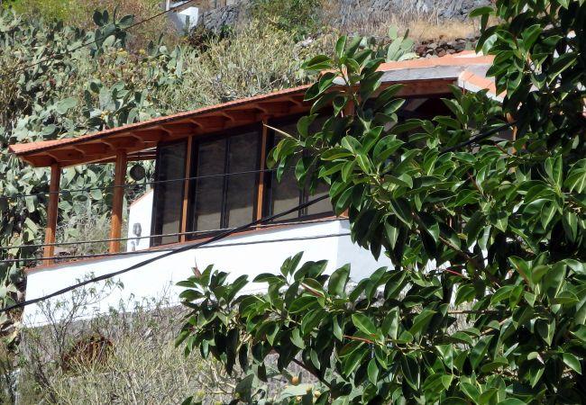 Maison de vacances Casa Ventura (2176961), Igueste Puertecito, Ténérife, Iles Canaries, Espagne, image 15
