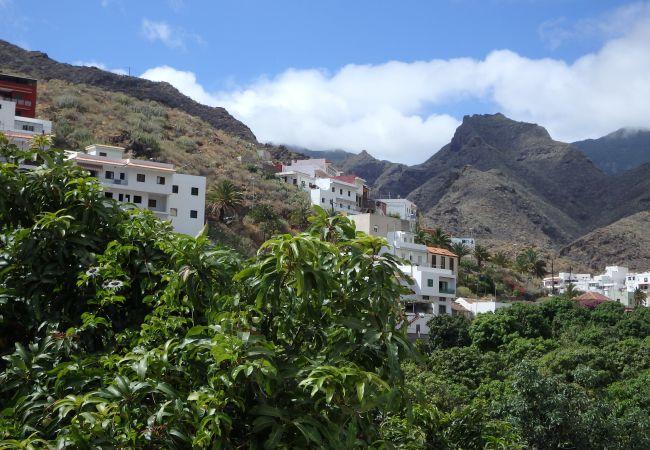 Maison de vacances Casa Ventura (2176961), Igueste Puertecito, Ténérife, Iles Canaries, Espagne, image 21