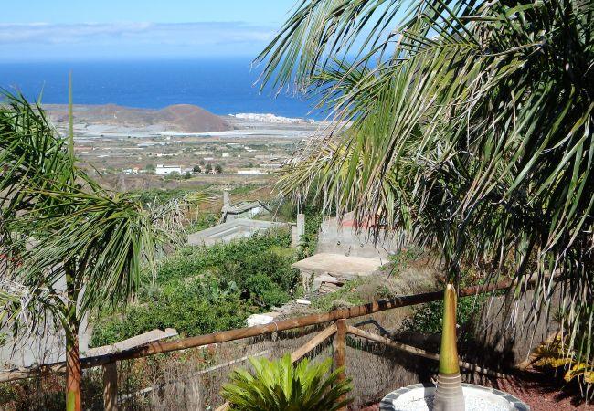 Maison de vacances Finca Angeles (2176962), Güimar, Ténérife, Iles Canaries, Espagne, image 22