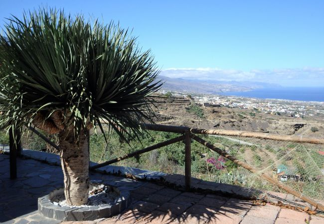 Maison de vacances Finca Angeles (2176962), Güimar, Ténérife, Iles Canaries, Espagne, image 24