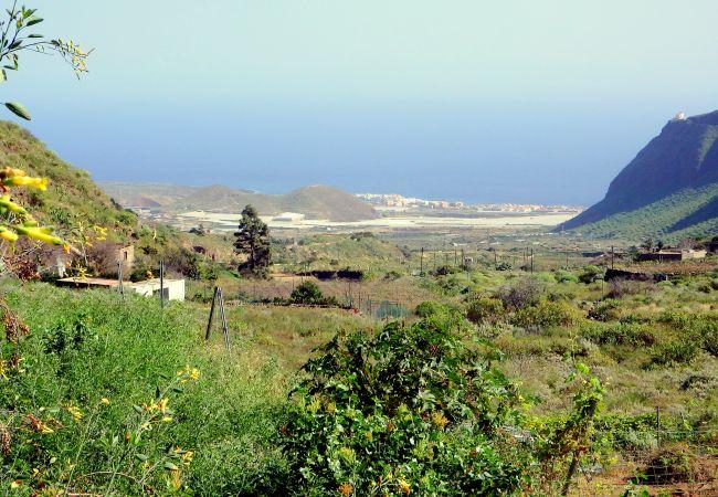 Maison de vacances Finca Casa Blanca (2176963), Güimar, Ténérife, Iles Canaries, Espagne, image 22