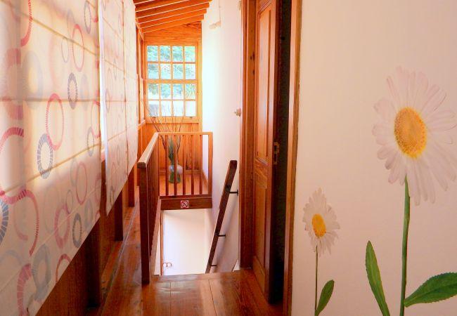 Maison de vacances Casa Yeyo (2176965), Igueste Puertecito, Ténérife, Iles Canaries, Espagne, image 11