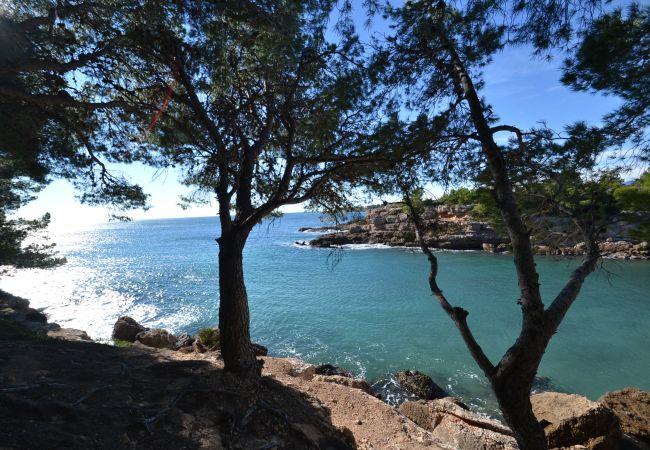 Ferienhaus CALAFAT 7 (2072883), L'Ametlla de Mar, Costa Dorada, Katalonien, Spanien, Bild 44